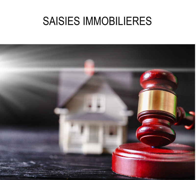 SAISIES IMMOBILIERES